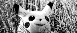 Pikachu im Feld – CC Sadie Hernandez (flickr)